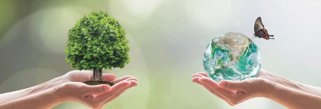Soli Clean milieuvriendelijk duurzaam schoonmaken